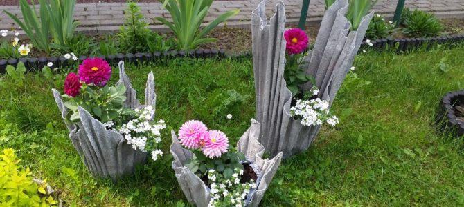 Ogrodoterapia w naszym Domu – AKTUALIZACJA